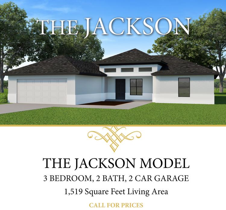 The Jackson Model